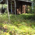 Manunsaari-2013-005-1024x768