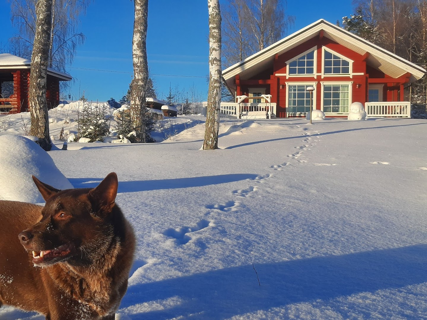 Myllymökki talvi3